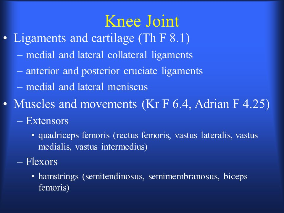 Knee Joint Ligaments and cartilage (Th F 8.1)