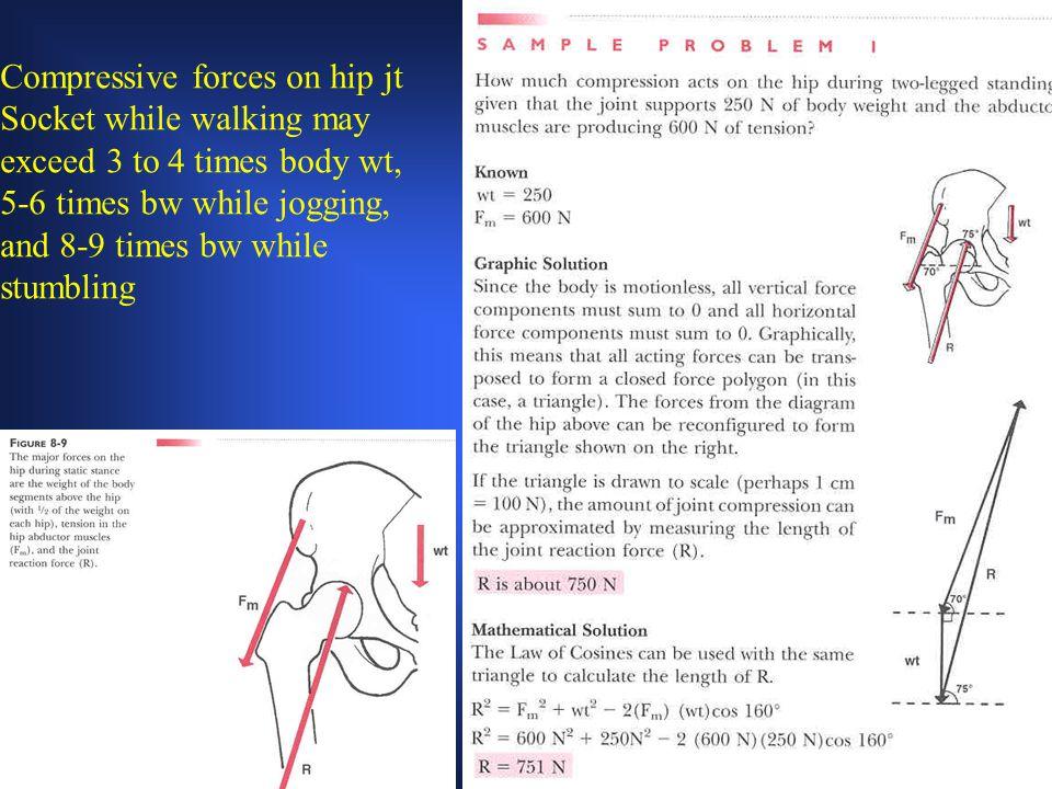 Compressive forces on hip jt