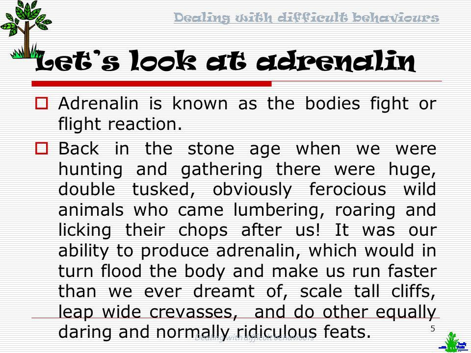 Let's look at adrenalin