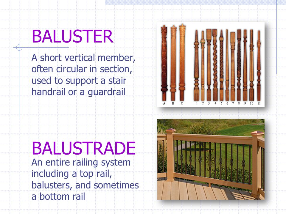 BALUSTER A short vertical member, often circular in section, used to support a stair handrail or a guardrail.