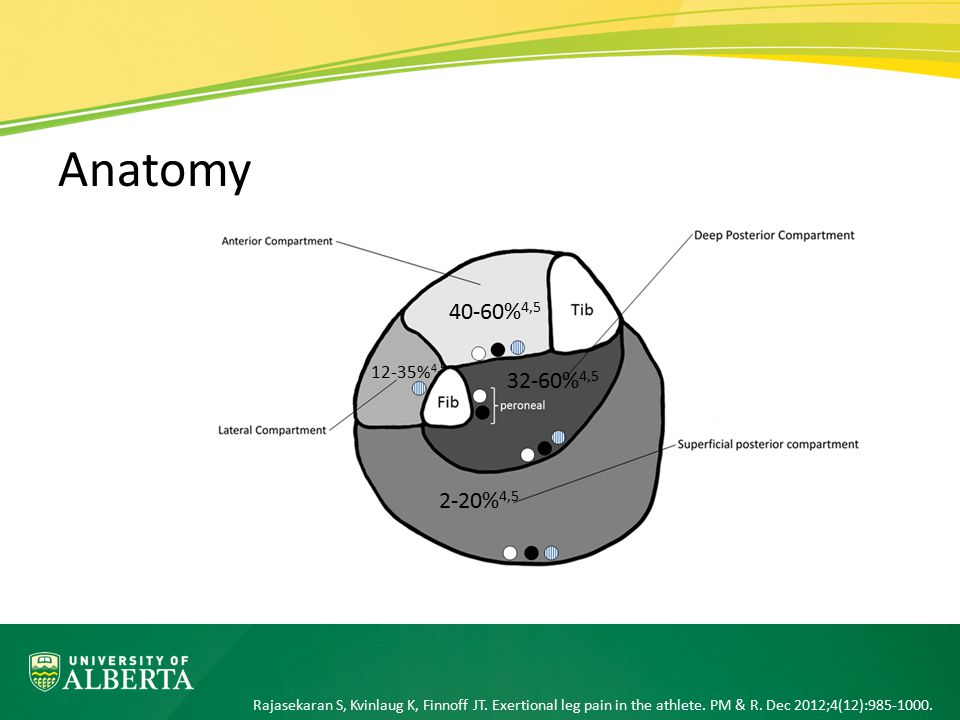 Anatomy 40-60%4,5. 12-35%4,5. 32-60%4,5. CECS involves the anterior compartment in 40%-60% of patients.