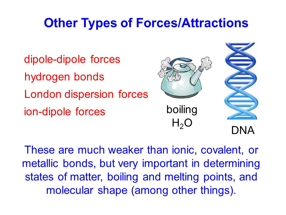 Other Types of Forces/Attractions