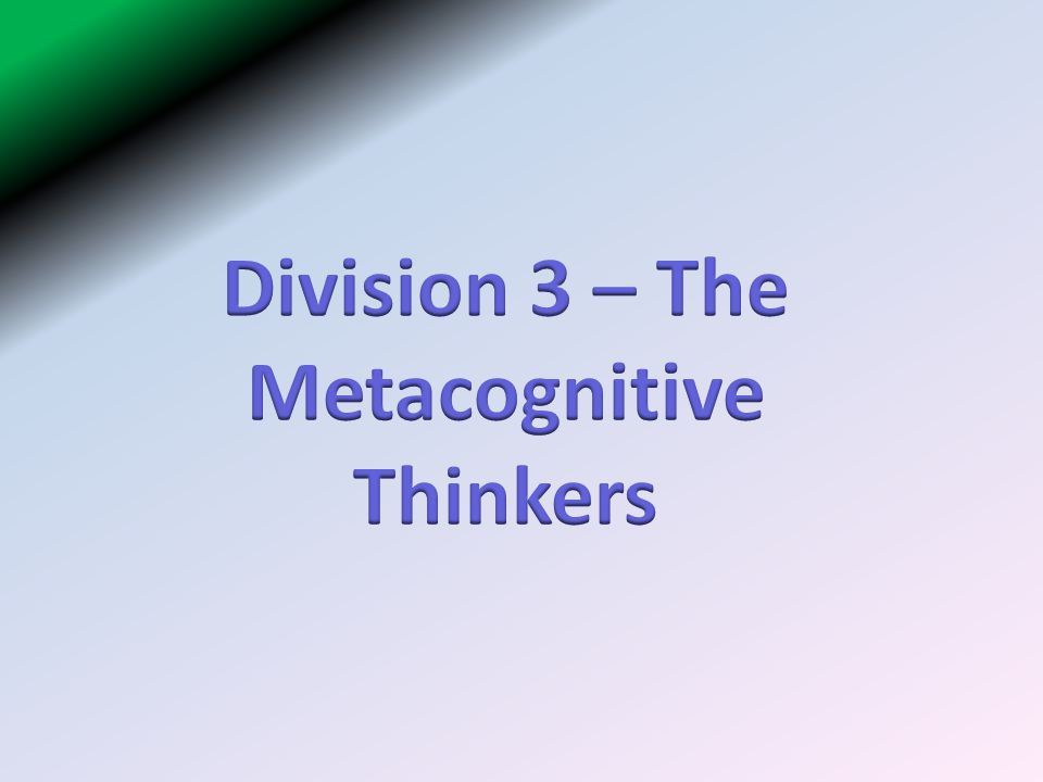 Division 3 – The Metacognitive Thinkers