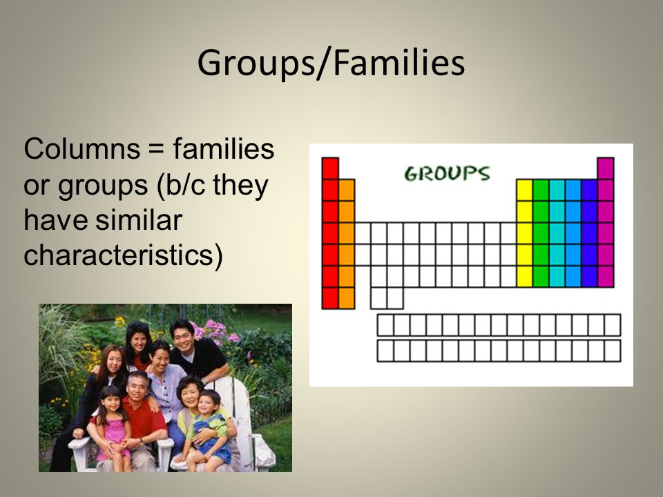Groups/Families Columns = families or groups (b/c they have similar characteristics)