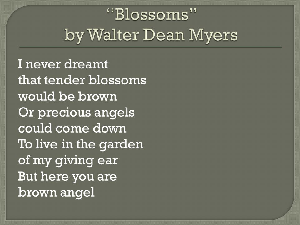 Blossoms by Walter Dean Myers