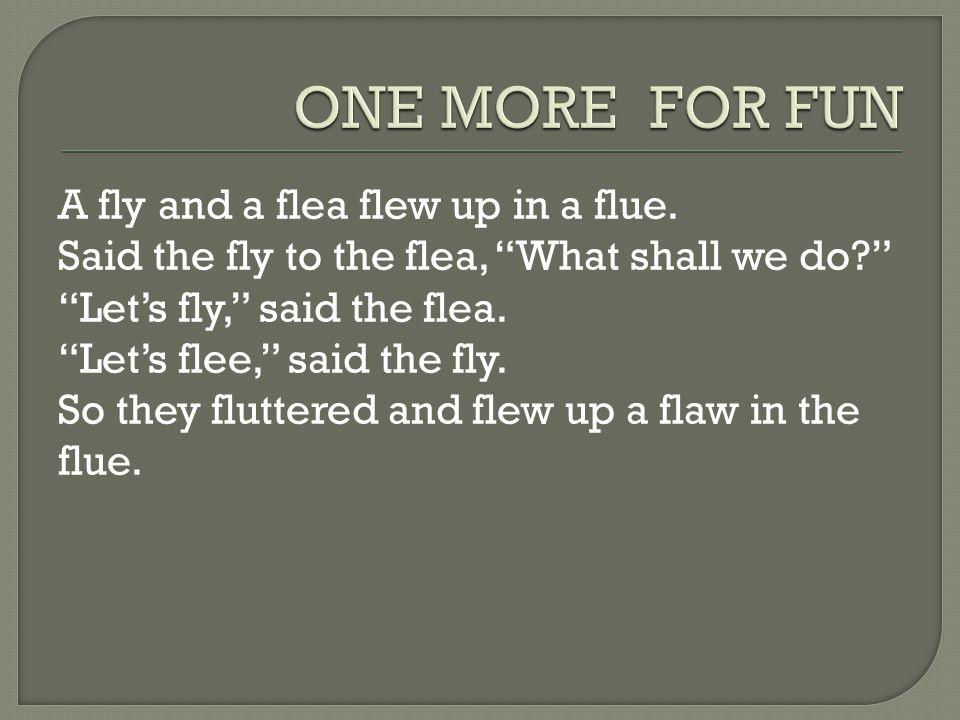 ONE MORE FOR FUN A fly and a flea flew up in a flue.