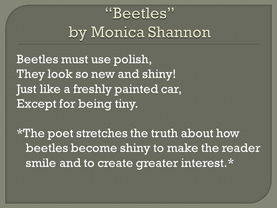 Beetles by Monica Shannon