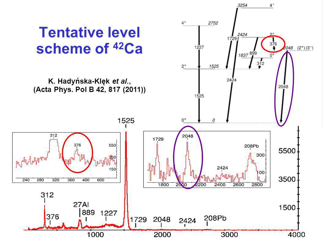 Tentative level scheme of 42Ca