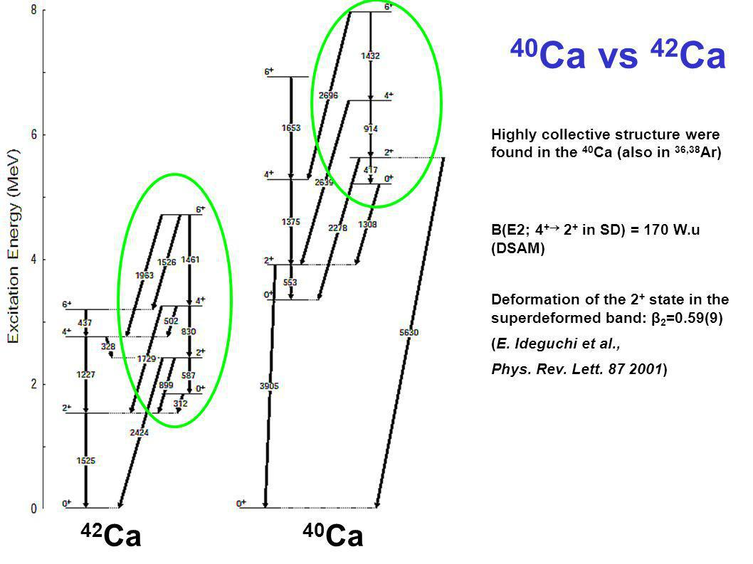 40Ca vs 42Ca Highly collective structure were found in the 40Ca (also in 36,38Ar) B(E2; 4+ 2+ in SD) = 170 W.u (DSAM)