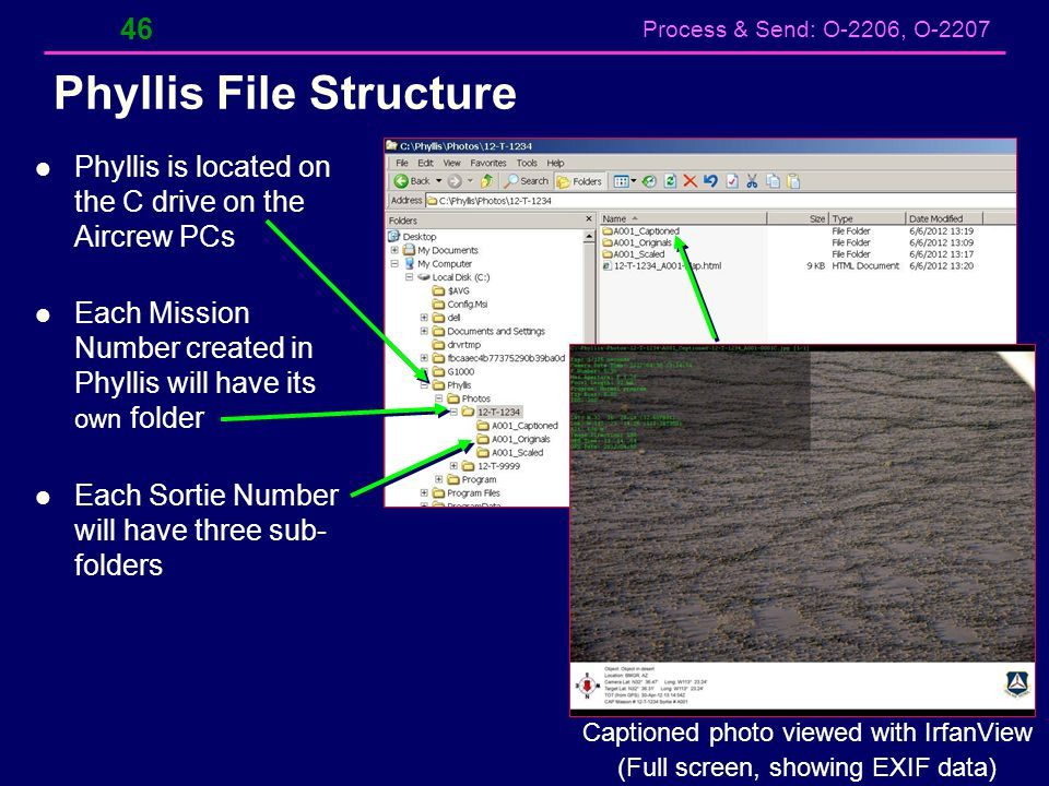 Phyllis File Structure
