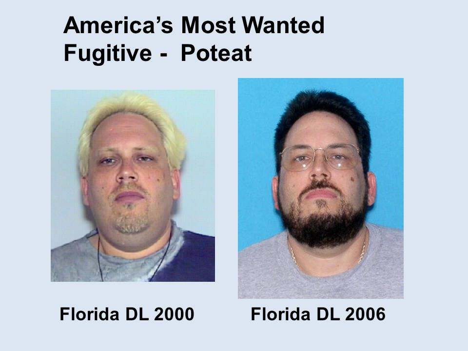 America's Most Wanted Fugitive - Poteat Florida DL 2000