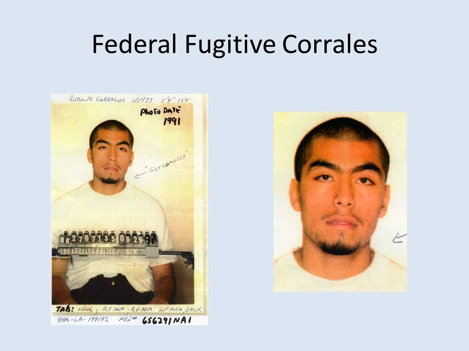 Federal Fugitive Corrales