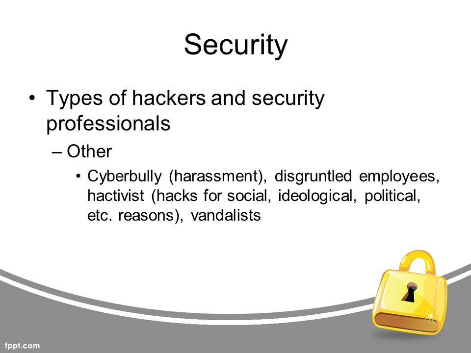 Security Types of hackers and security professionals Other