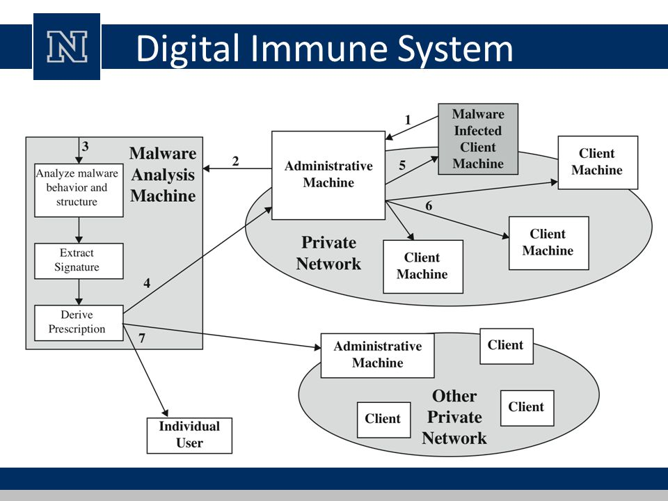 Digital Immune System The digital immune system is a comprehensive