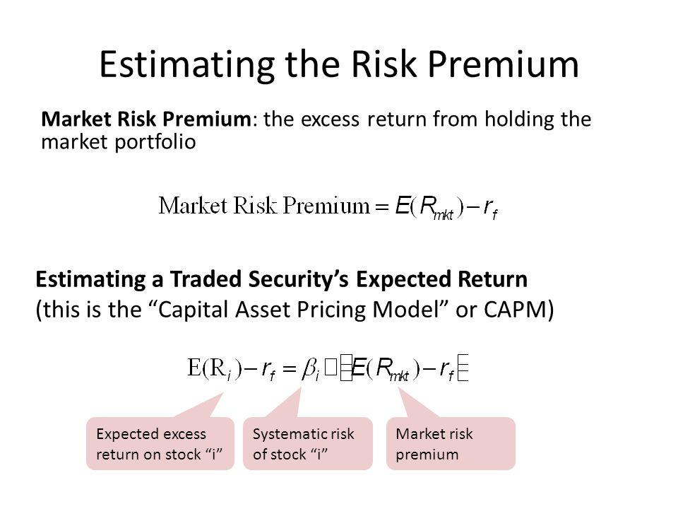 Estimating the Risk Premium
