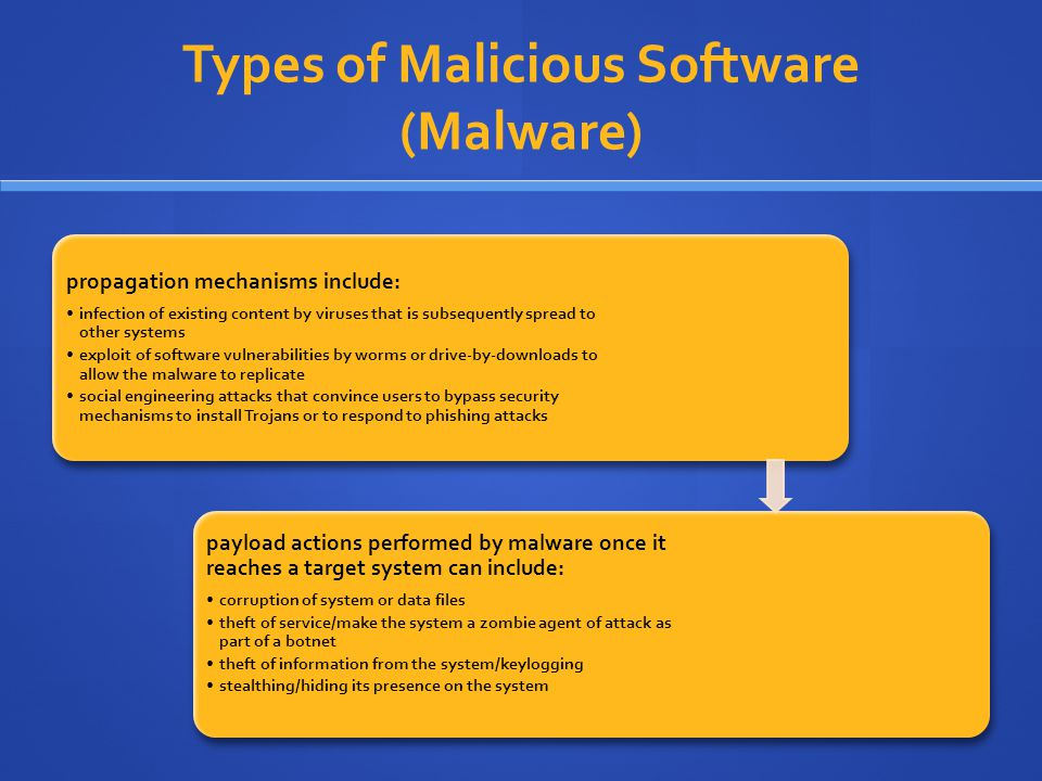 Types of Malicious Software (Malware)