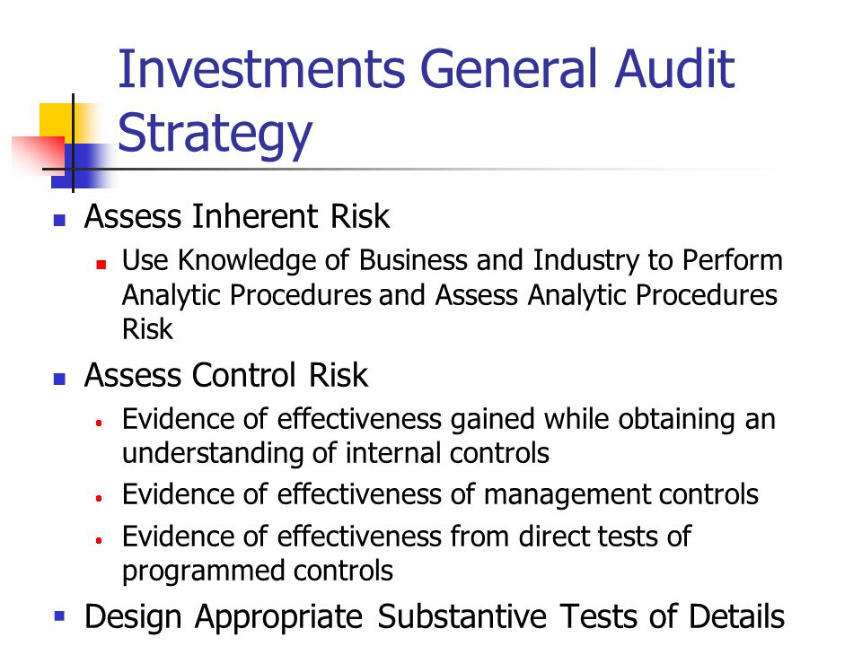 Investments General Audit Strategy