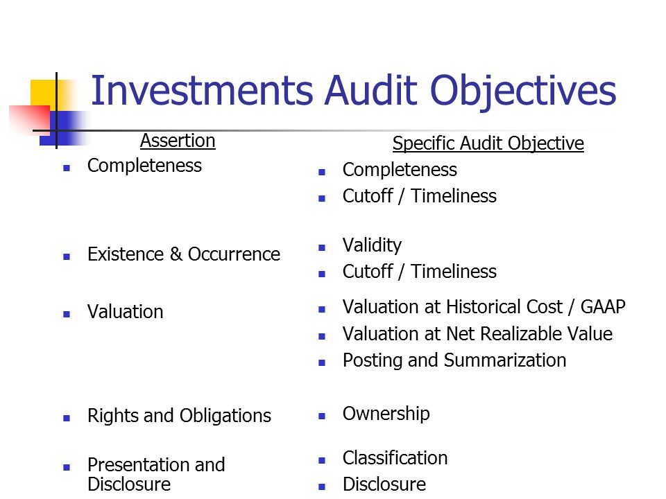 Investments Audit Objectives