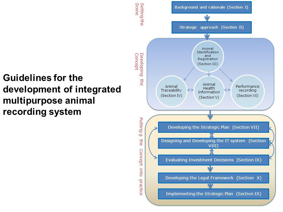 Strategic approach (Section II)
