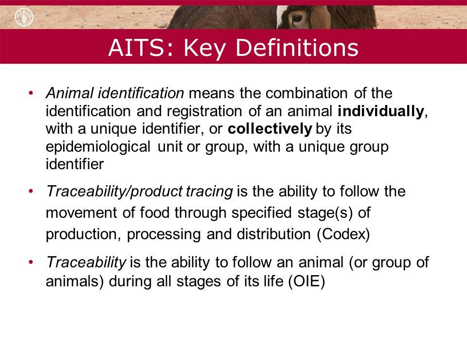 AITS: Key Definitions