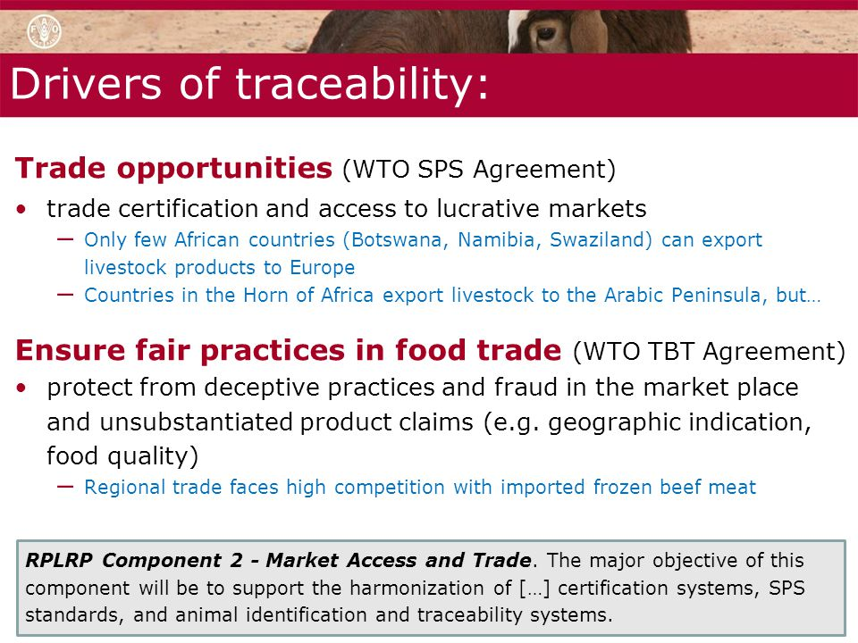 Drivers of traceability: