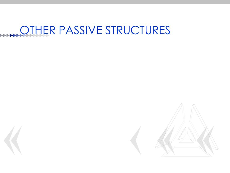 OTHER PASSIVE STRUCTURES
