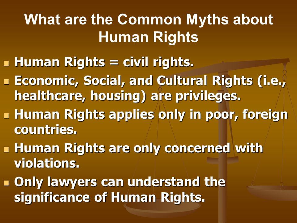 What are the Common Myths about Human Rights