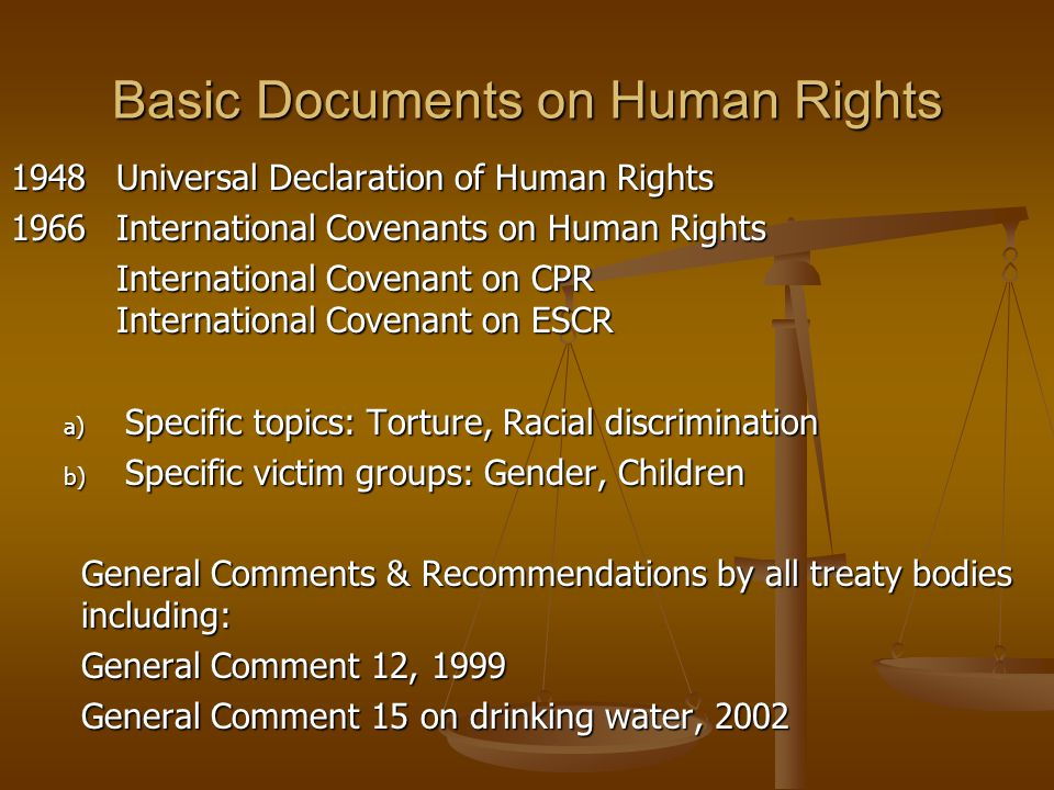 Basic Documents on Human Rights
