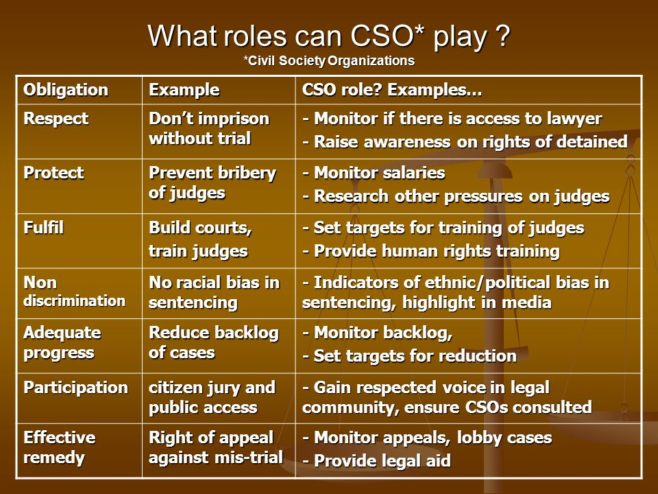 What roles can CSO* play *Civil Society Organizations