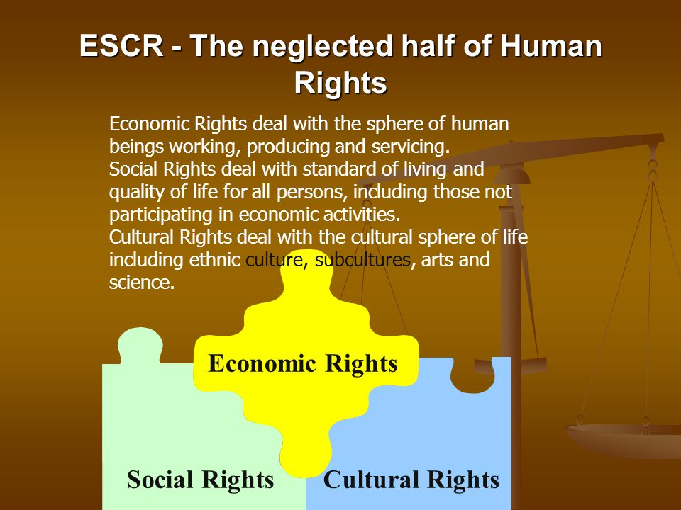 ESCR - The neglected half of Human Rights
