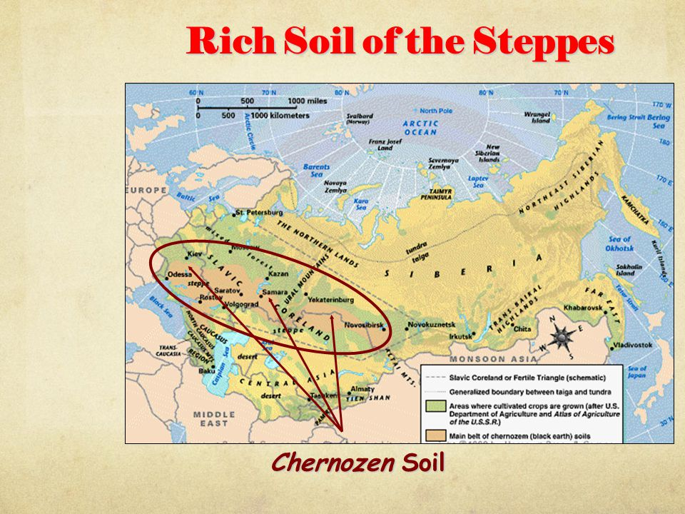 Rich Soil of the Steppes