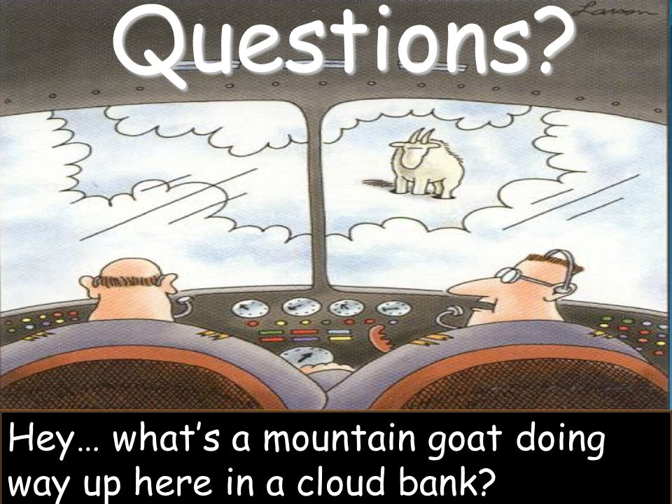 Questions Hey… what's a mountain goat doing way up here in a cloud bank