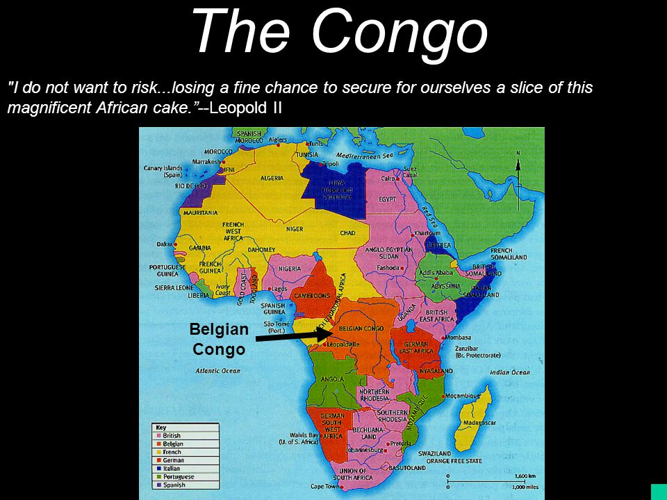 The Congo I do not want to risk...losing a fine chance to secure for ourselves a slice of this magnificent African cake. --Leopold II.