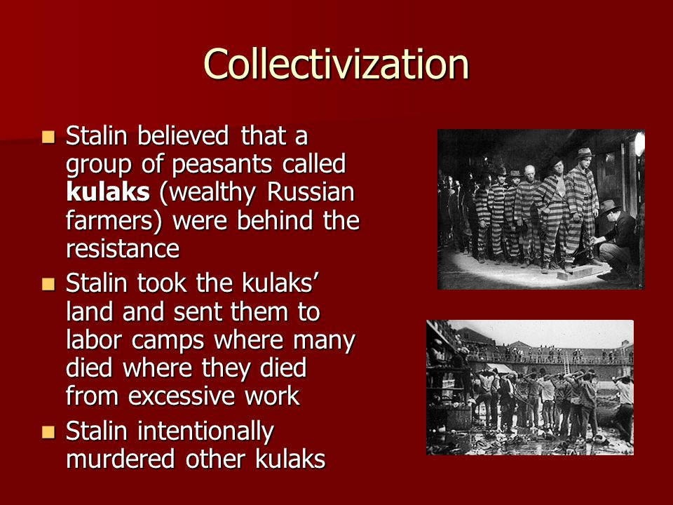 Collectivization Stalin believed that a group of peasants called kulaks (wealthy Russian farmers) were behind the resistance.