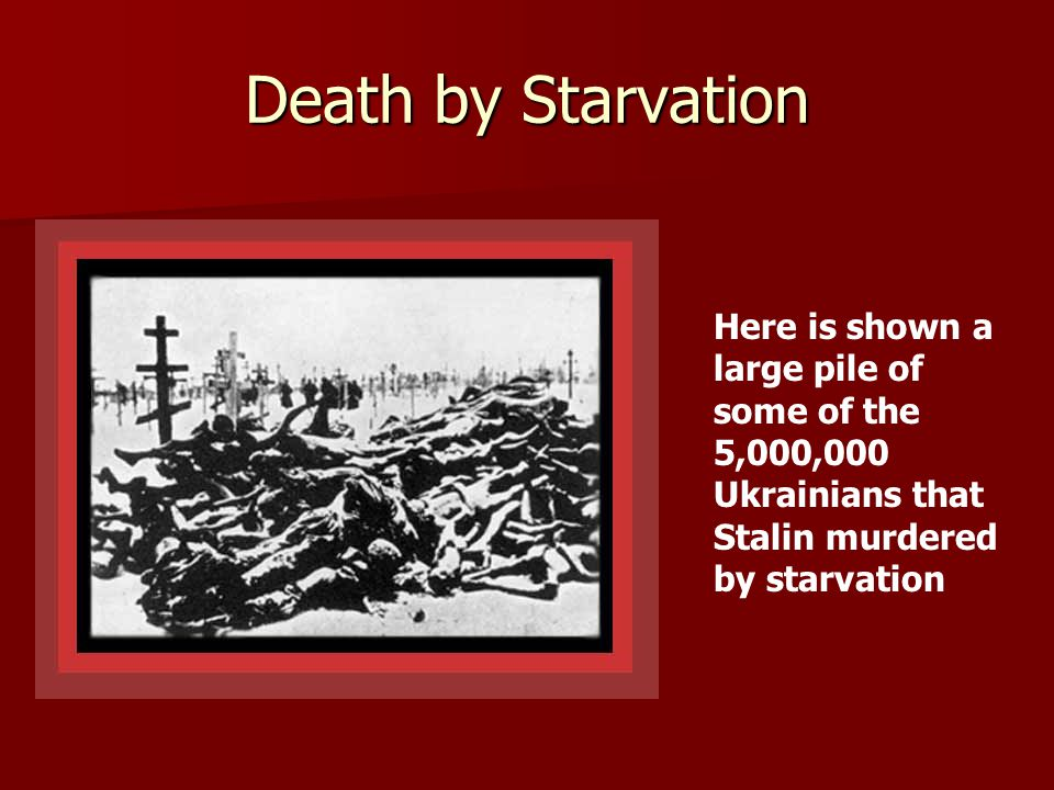 Death by Starvation Here is shown a large pile of some of the 5,000,000 Ukrainians that Stalin murdered by starvation.