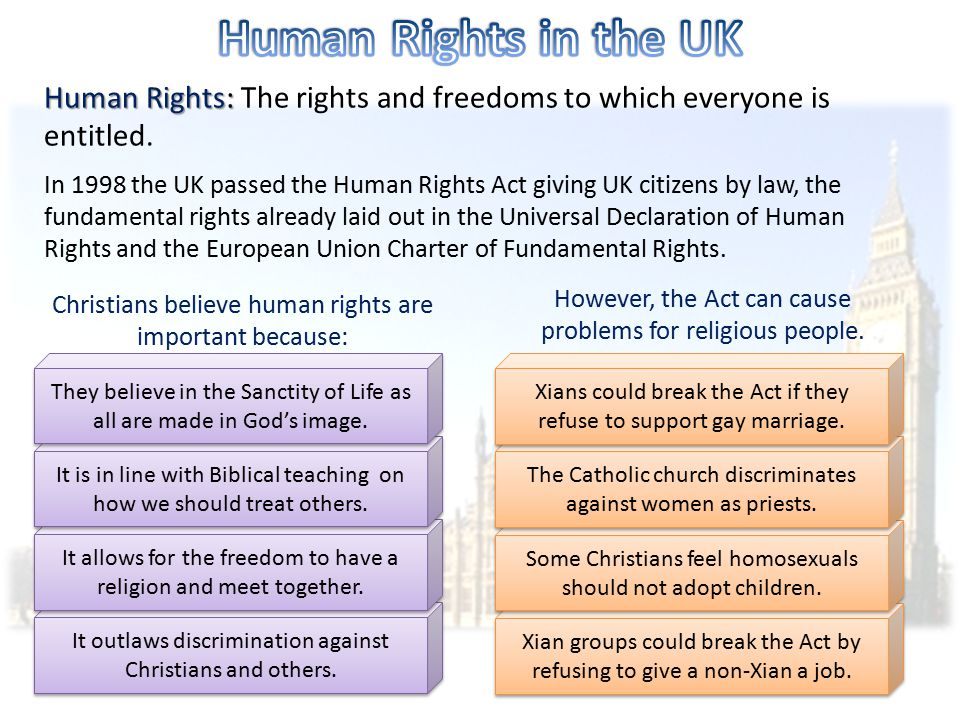 Human Rights in the UK Human Rights: The rights and freedoms to which everyone is entitled.