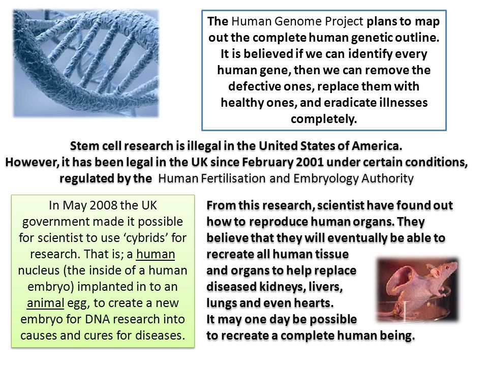 Stem cell research is illegal in the United States of America.