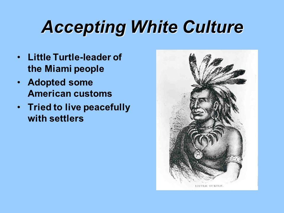Accepting White Culture