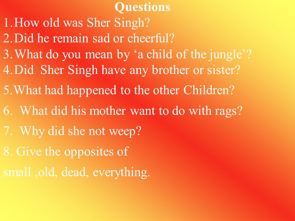 Questions How old was Sher Singh Did he remain sad or cheerful What do you mean by 'a child of the jungle'