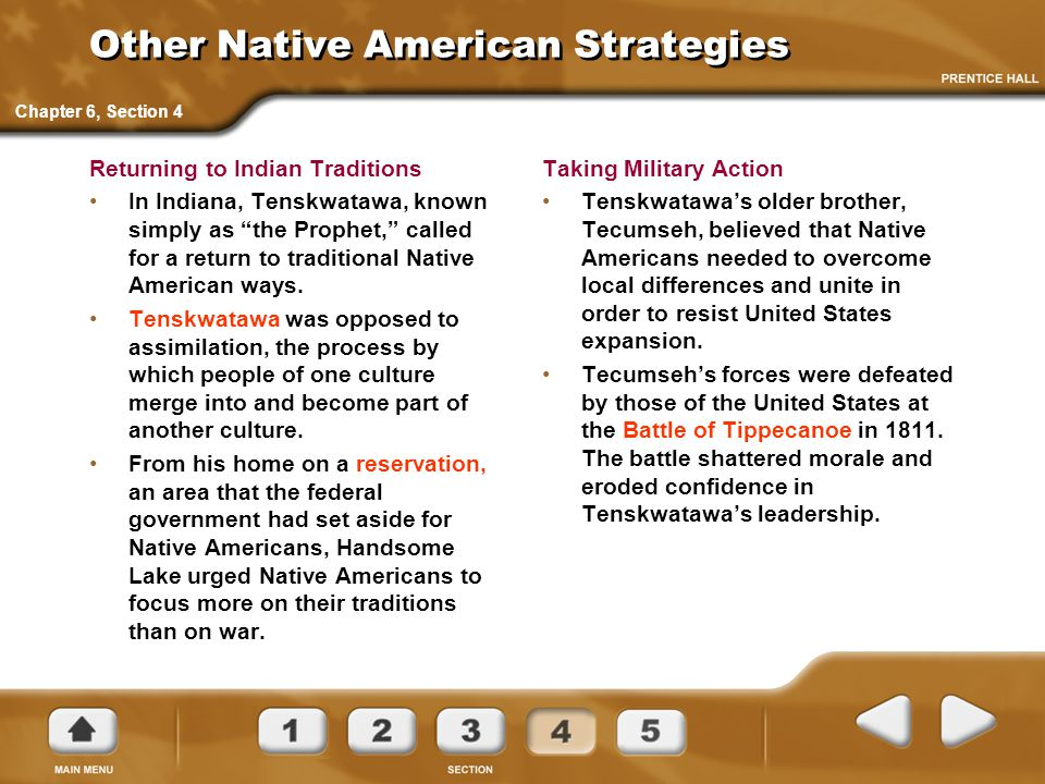 Other Native American Strategies
