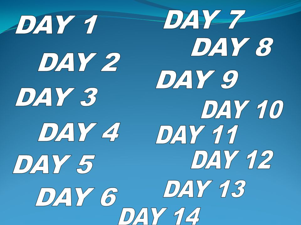 DAY 7 DAY 1 DAY 8 DAY 2 DAY 9 DAY 3 DAY 10 DAY 4 DAY 11 DAY 12 DAY 5 DAY 13 DAY 6 DAY 14