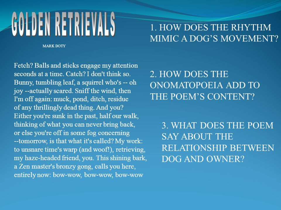 GOLDEN RETRIEVALS 1. HOW DOES THE RHYTHM MIMIC A DOG'S MOVEMENT