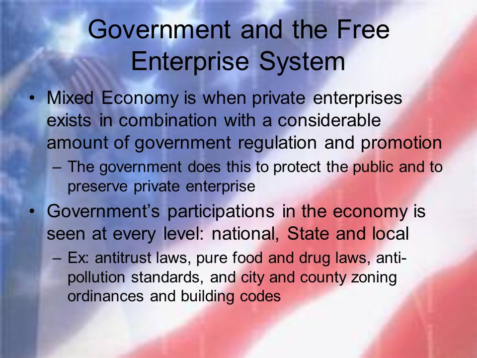 Government and the Free Enterprise System