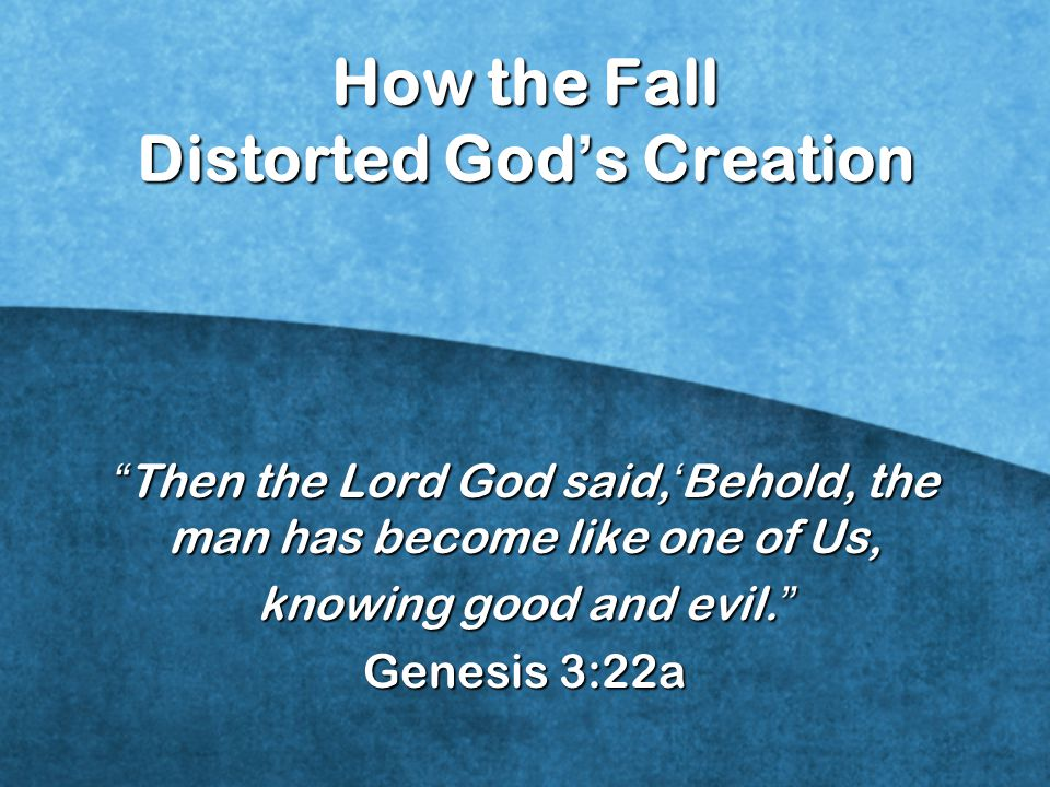 How the Fall Distorted God's Creation