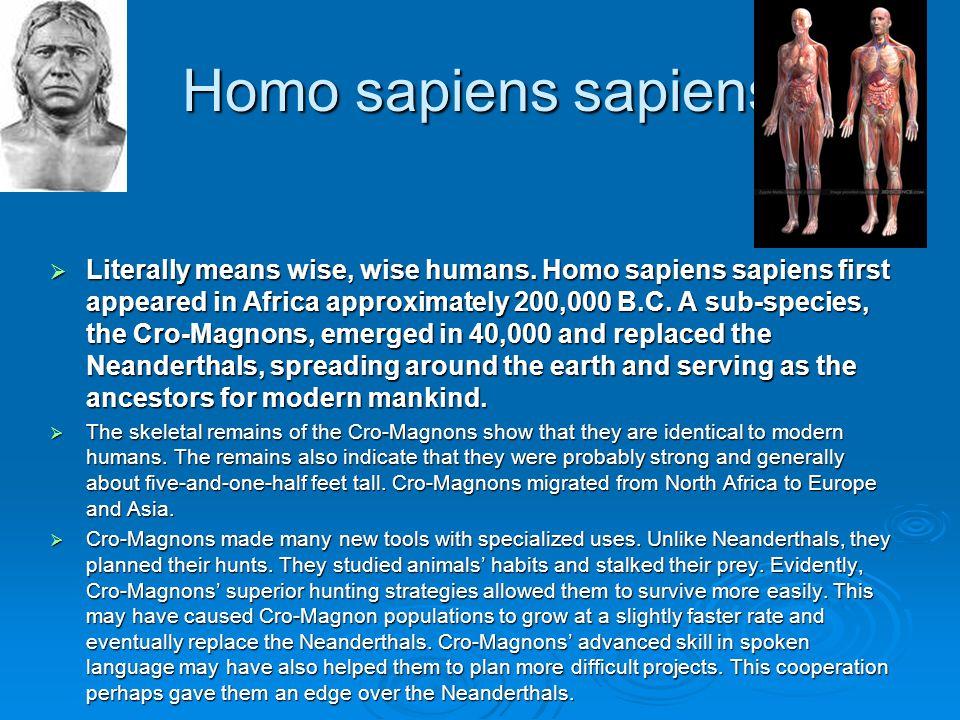 Homo sapiens sapiens