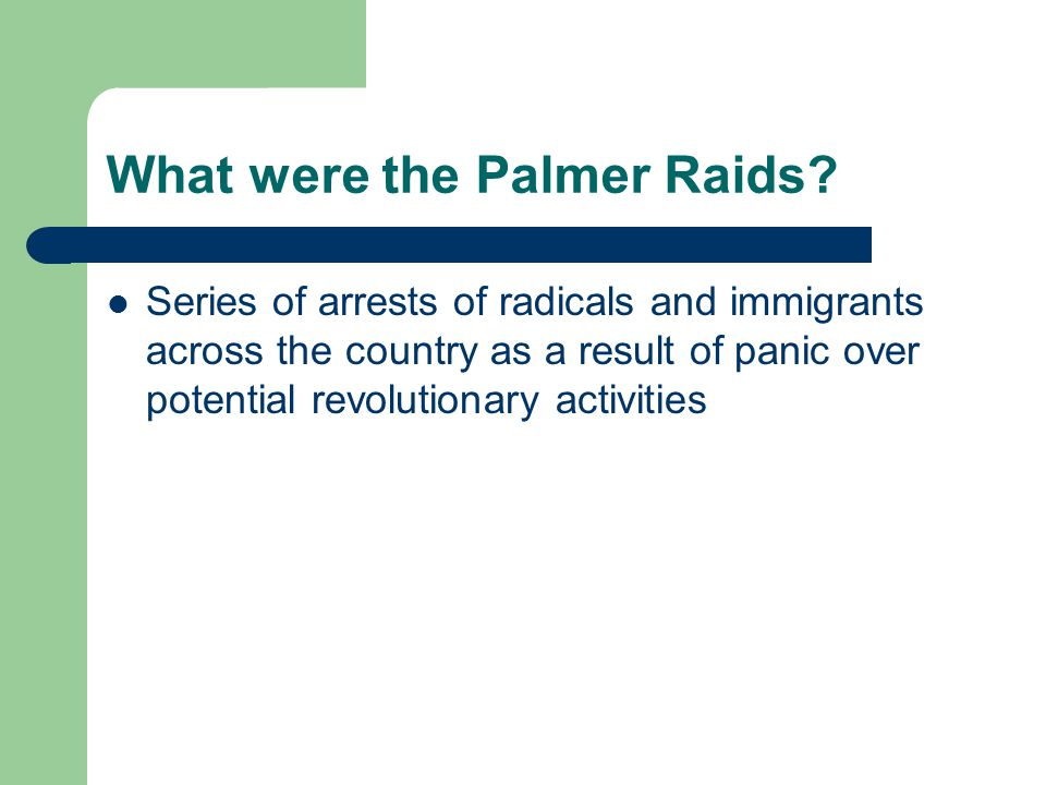 What were the Palmer Raids