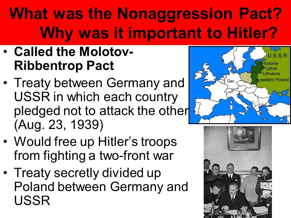 What was the Nonaggression Pact Why was it important to Hitler