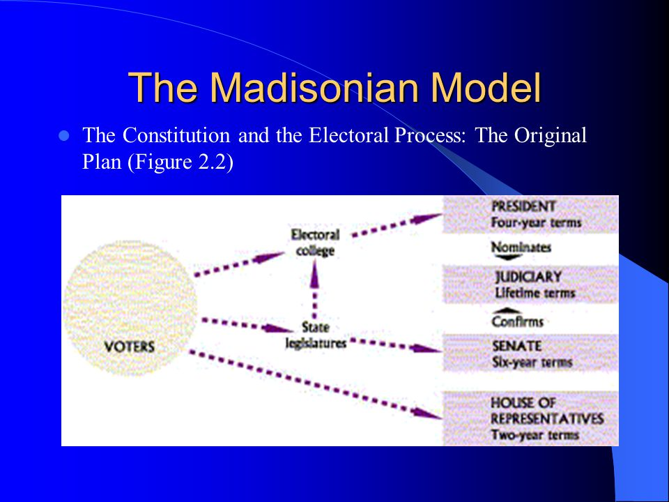 The Madisonian Model The Constitution and the Electoral Process: The Original Plan (Figure 2.2)