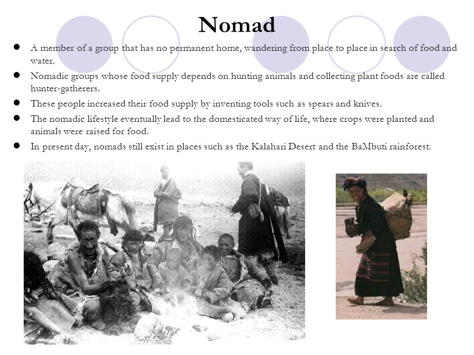 Nomad A member of a group that has no permanent home, wandering from place to place in search of food and water.