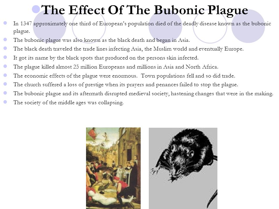 The Effect Of The Bubonic Plague